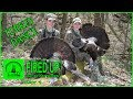 GIRLS Spring Turkey Hunting in West Virginia I How to read a gobbler I FIRED UP - Day 1