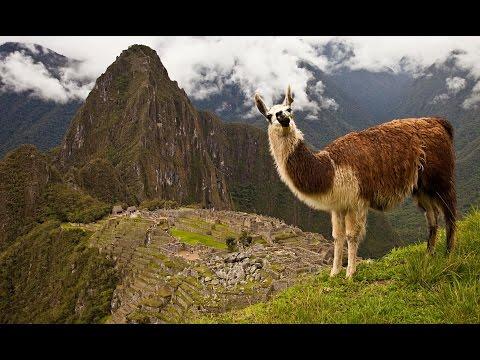 Machu Pichu ( PERU)