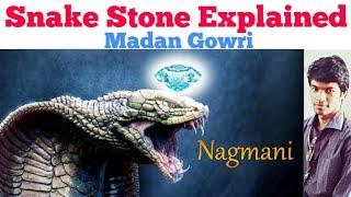 Snake Stone | Nagamani | Tamil | Madan Gowri | MG