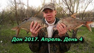 Дон 2017. Апрель. День 4