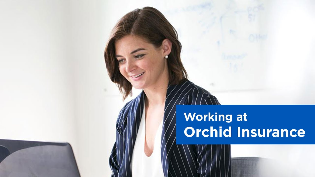 Careers Jobs In Insurance Orchid Insurance