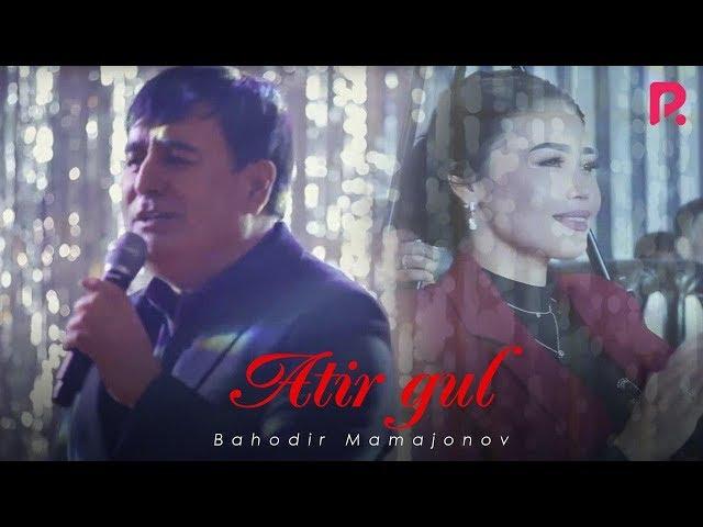 Bahodir Mamajonov - Atirgul | Баходир Мамажонов - Атиргул (Yangi yil kechasi 2019)
