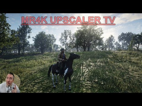 Experience RED DEAD REDEMPTION 2  in NATIVE 4K60 High Settings Live: Stream PC
