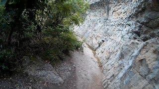 Cliffside Path - Niagara Glen Nature Reserve