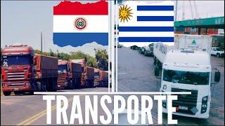 LAS SIMILITUDES CON EL TRANSPORTE PARAGUAYO 🚛🚚