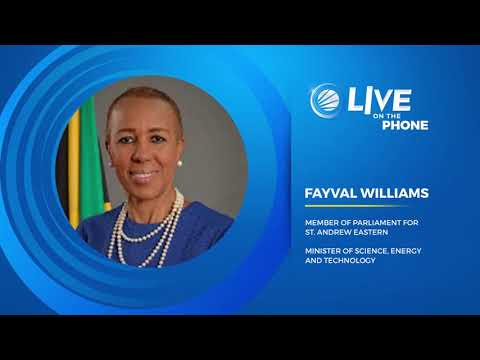 Energy Minister Fayval Williams Says She Has Not Neglected Her Constituency   | News | CVMTV
