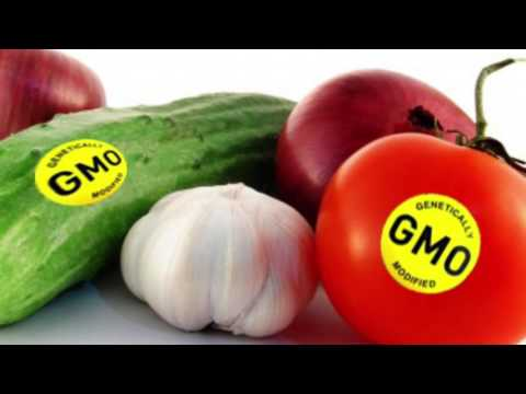 AGRI 482- GMO Labeling by Erica Vietor
