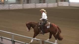 18RWC Amanda Self riding Smart Loaded Gun in the WCRA Beginner Horse Open Show 02 Draw 01