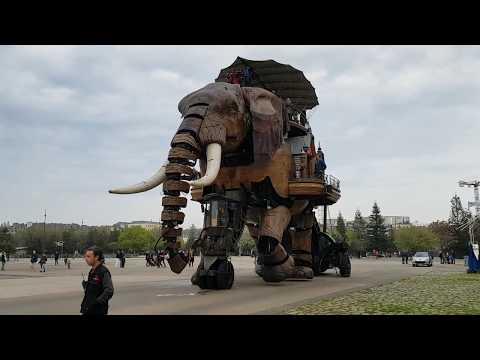 Éléphant du web - Le Guide de l'éléphant du web