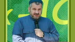 Наш любимый Алим - Магди хаджи Абидов, да хранит его Аллагь!