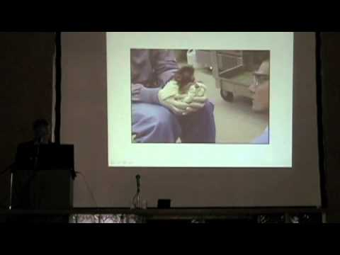 """Stephen Suomi: """"New Insights about Attachment in Rhesus Monkeys"""" Part 1"""