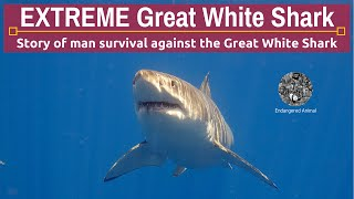 Extreme Great White Shark: Extreme Great White Shark Attack and Man Survival