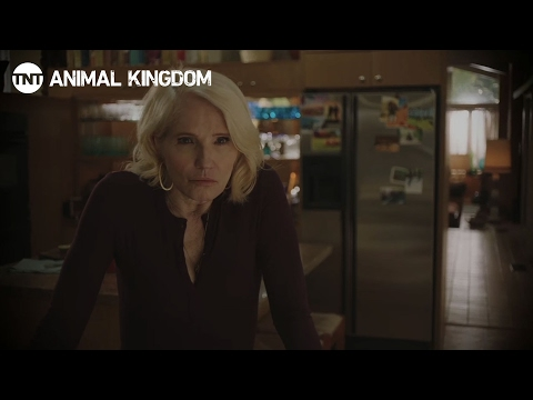 Animal Kingdom: Returns 2017   TNT
