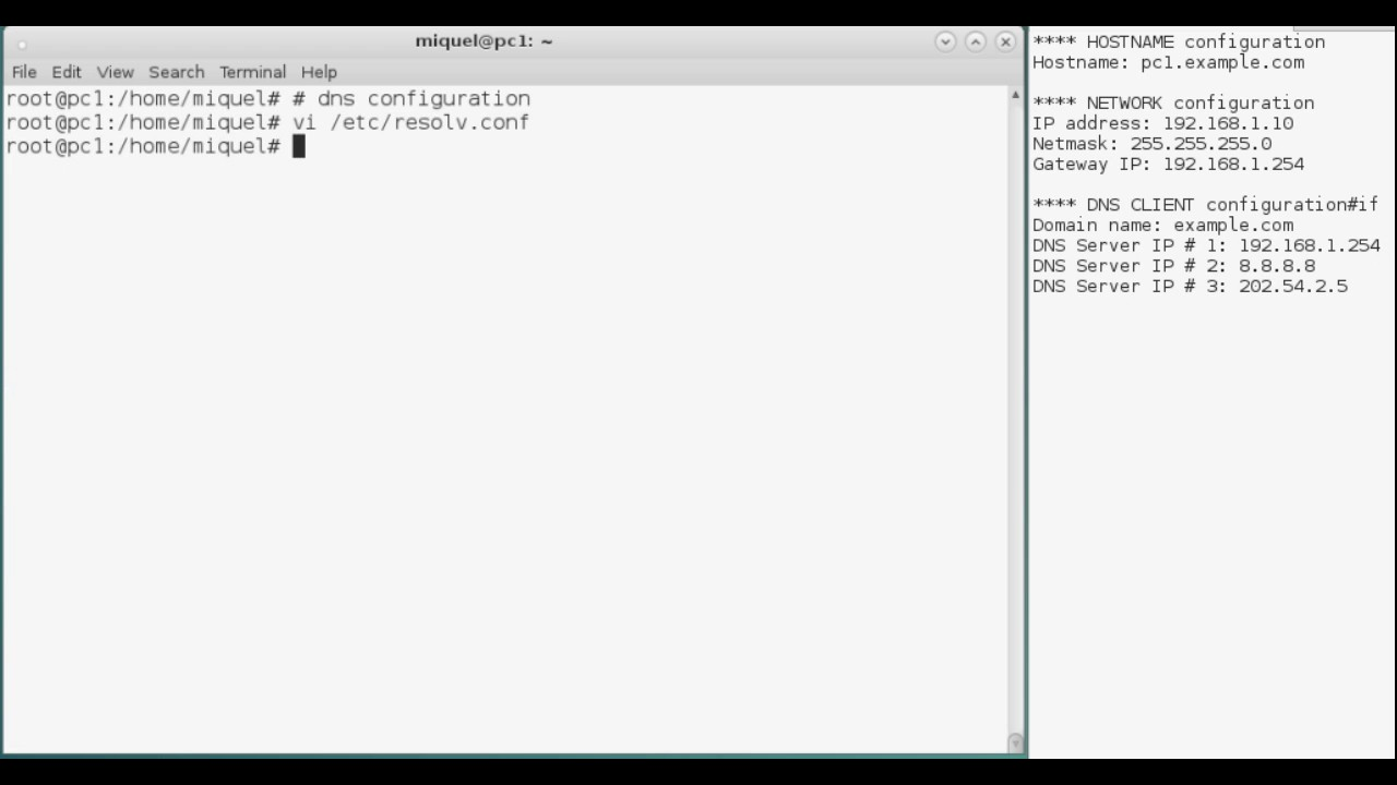 How to set static DNS Client on Linux Debian using console commands