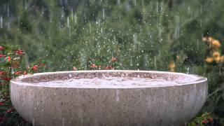 6 Hours Soothing Rain Storm + Schumann's Resonance Binaural Beat