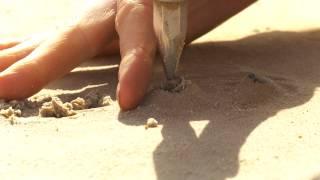 Opgraving groot grafveld uit de Steentijd in Dalfsen