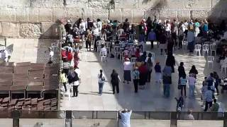 Tel Aviv to Jerusalem - Day Trip with public Bus (Old City, Jaffa gate, Wailing Wall, Centre)
