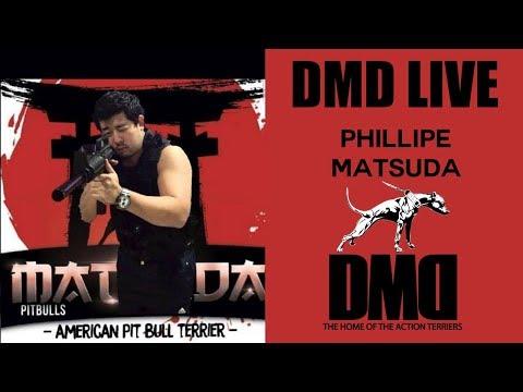 DMD Live - Phillipe Matsuda - da CBKC a IBDC