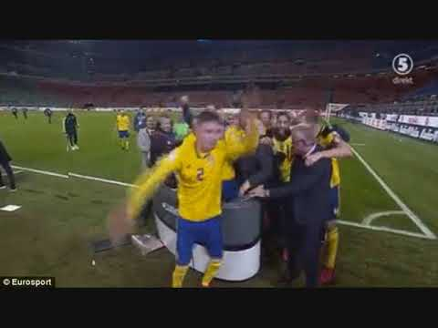Sweden players mob TV presenters in celebrations after World Cup qualification... as bizarre dance
