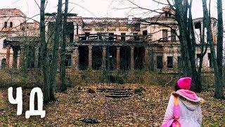 Нашли СТРАШНЫЙ ЗАМОК в ЛЕСУ и ЧУЖОЙ ДНЕВНИК! МИСТИКА В ОГРОМНОМ ДВОРЦЕ | Anny Magic