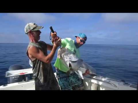 Deep Sea Fishing Charters Sanibel & Ft Myers FL www.ReelRevengeFishing.com