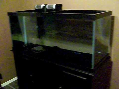 Topfin 75 gallon aquarium   YouTube