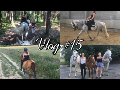Vlog #15 // Focení do časopisu, trénink od Anne, první trysk se Sagarem