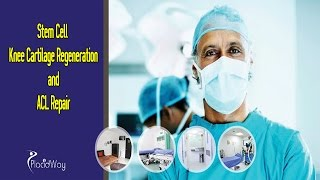 Stem Cell Knee Cartilage Regeneration And Acl Repair India