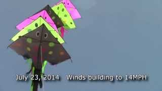 Stingray Kite Stack Morro Bay Thumbnail