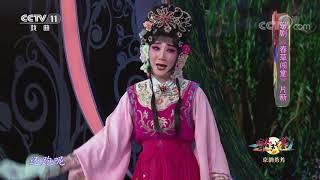 《青春戏苑》 20200121 京韵芬芳| CCTV戏曲