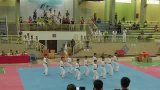 Malaysia Kukkiwon Taekwondo Hanmadang Opening Ceremony Kukkiwon Demonstration Team 2019