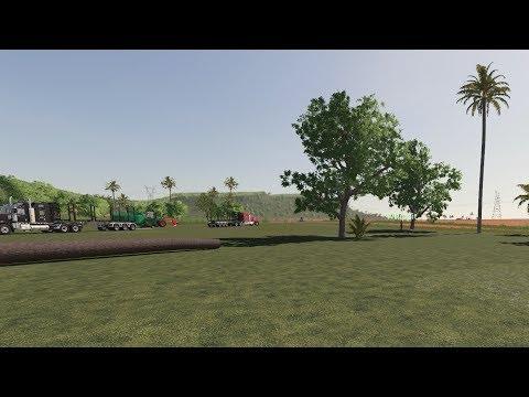 SKÖVLAR STORSKOGEN | Farming Simulator 19