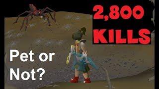 Loot from 2800 Venenatis Kills - Pet or Not? (OSRS)