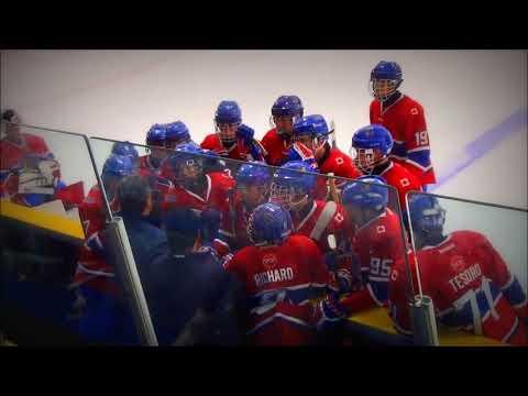 2015 Toronto Red Wings Quarterfinals  ___ '02 Minor Bantam AAA  Marlboros vs Hamilton Bulldogs 4-1