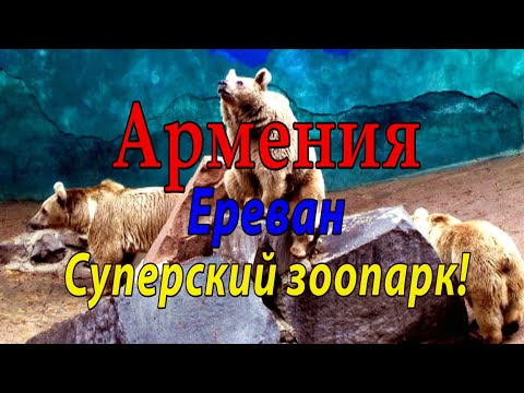 #5 Армения. Суперский зоопарк!