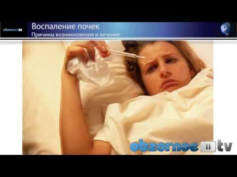 Как лечить застуженные почки эффективно и безопасно?
