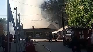 Odessa1.com - Пожар в парке Горького - 1