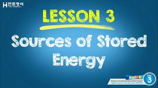 Science Step 3 Chapter 7, Lesson 3