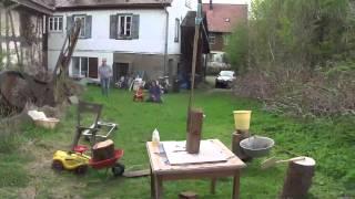 Der Lauf der Dinge. Eine Kettenreaktion im Garten