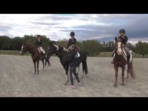 Randolph-Macon College Equestrian Club