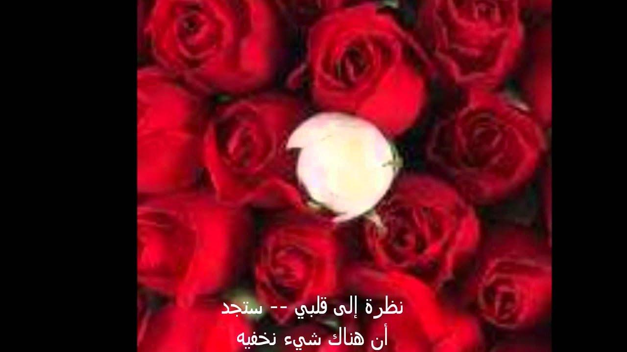 Mi Amor Arabe