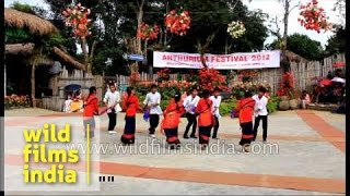 Chakma community from Tripura dances to Bollywood number