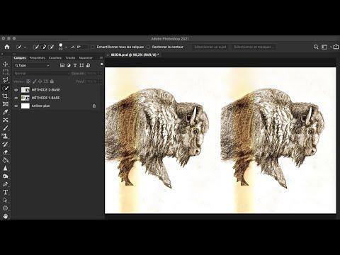 Effacer une bande de couleur sur une photo : Deux méthodes avec Photoshop