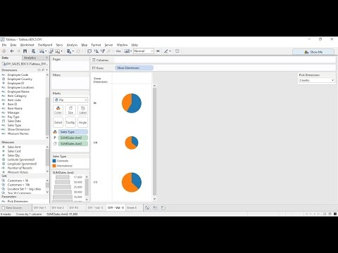 tableau---do-it-yourself-tutorial---parameters---diy--4-(a)-of-50
