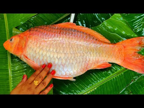 Goldfish Cutting & Cooking   Gold Fish Eggs Soup Recipe Indian   How To Clean And Cook Fish Gravy