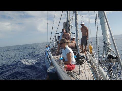 Sandi; Ocean Sailing, Finland - Caribbean Islands - Bermuda