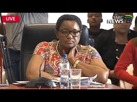 Inquiry into Social Grants crisis: 26 January 2018