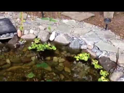 Snowmaking pump setup doovi for 1500 gallon koi pond