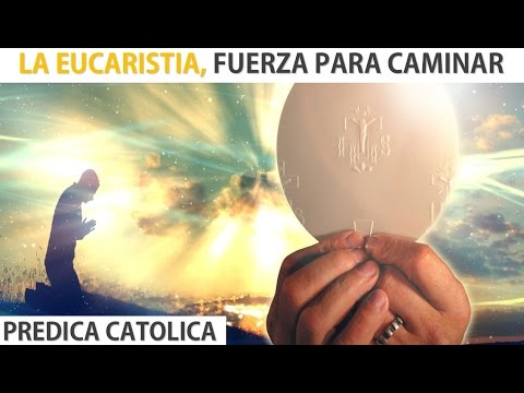 La Eucaristía, Fuerza Para Caminar (Predica Católica 2016)