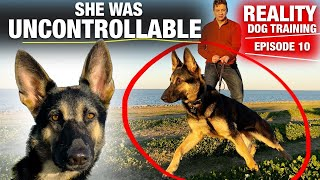 She was TOTALLY UNCONTROLLABLE! Reality Dog Training